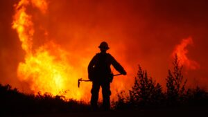 Internet y Elon Musk: los dos mejores aliados para combatir los incendios forestales