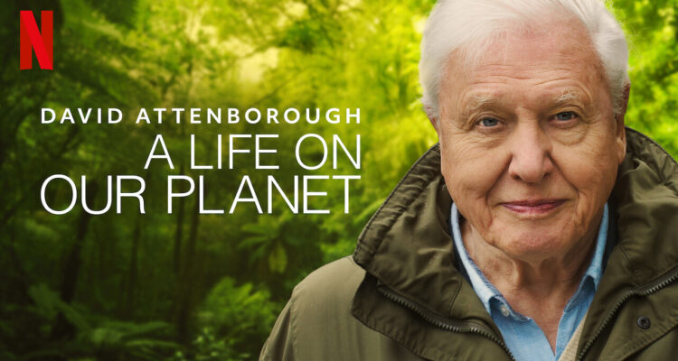 Netflix David Attenborough